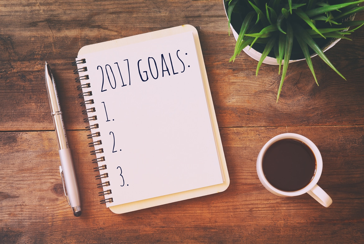Doable goals 2017